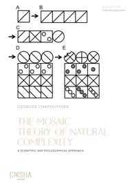 Parution – The Mosaïc Theory of natural Complexity – G.CHAPOUTHIER