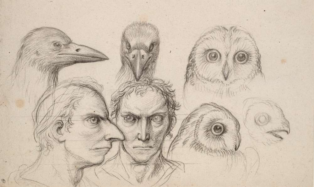 [Colloque] La rencontre humain-animal: vers un anthropomorphisme critique