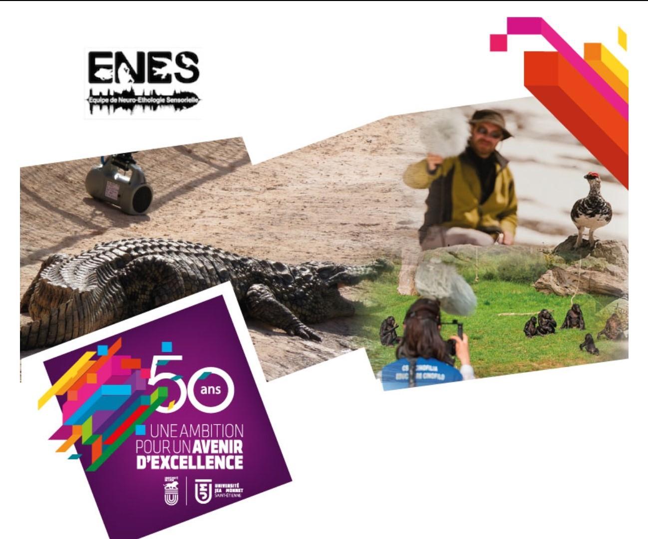 Langage des animaux : 15 ans de recherches au laboratoire ENES