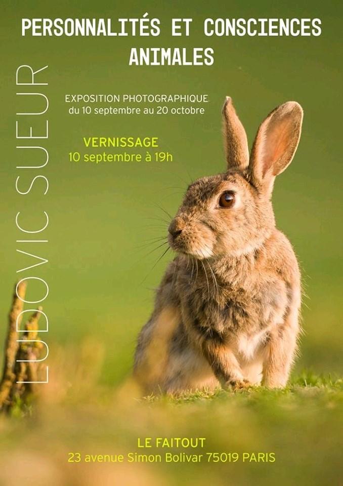 """[10 sept 2019] Vernissage """"Personnalités et Consciences animales"""""""