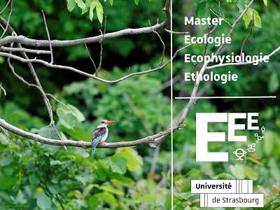 Master Ecophysiologie, Ecologie & Ethologie – Univ Strasbourg