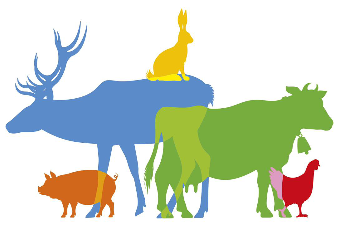 La SfZ soutient le Référendum pour les animaux