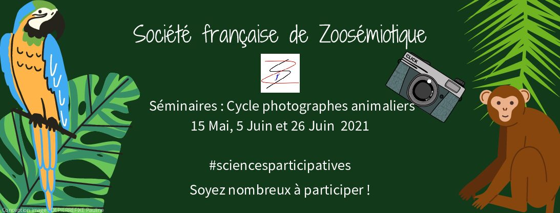 Cycle Photographes animaliers, 15 mai, 5 et 26 juin