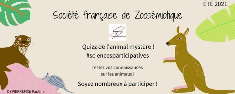 [Quizz été 2021] Cet été, trouvez l'animal mystère avec Pauline Depierrefixe!